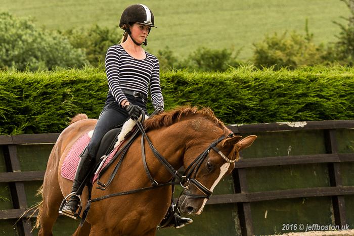 Equestrian-5