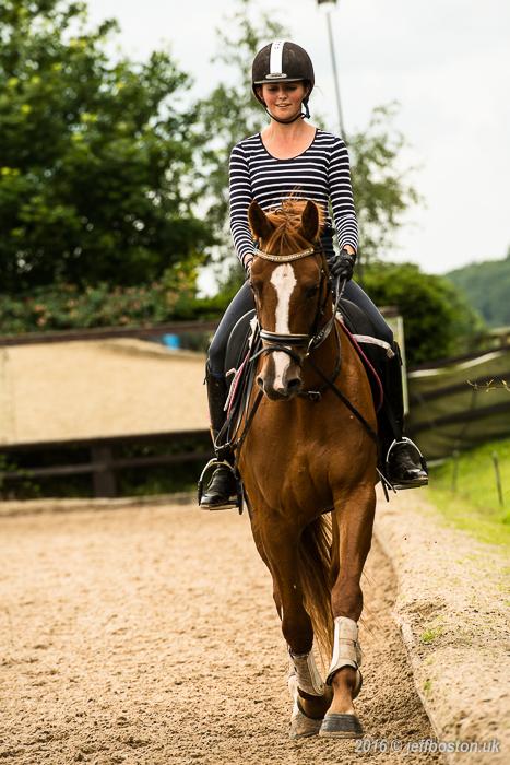 Equestrian-6