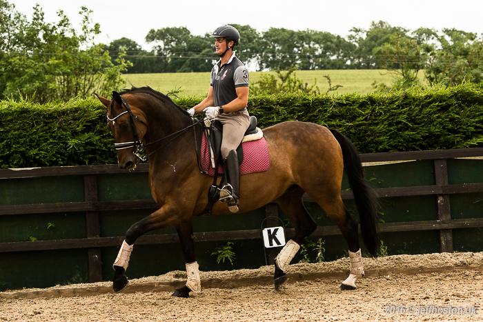 Equestrian-7