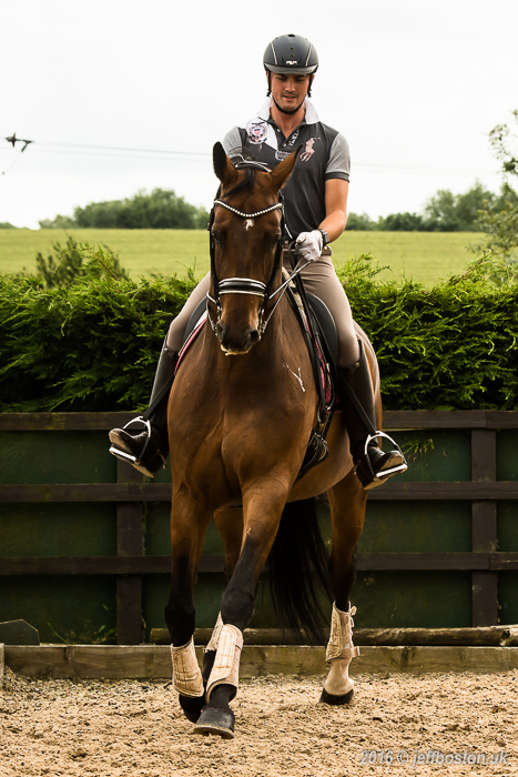Equestrian-8